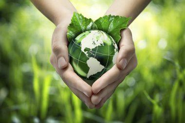 Влияние средств защиты растений на окружающую среду